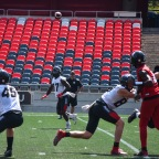 A rep is a rep; Ottawa Redblacks' DeVonte Dedmon makes impact in any way in young 2021 CFL season