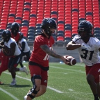 It is Ottawa Redblacks game day in the nation's capital; Redblacks to kickoff against B.C Lions at home